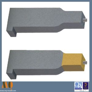 Ticn Coating Precision Misumi Standard Mold Component (MQ1060) pictures & photos