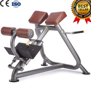 Gym Fitness Equipment Adjustable Roman Bench pictures & photos