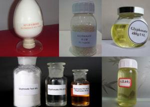 Herbicide Glyphosate 95% TC 50% SP 41% IPA Salt SL pictures & photos