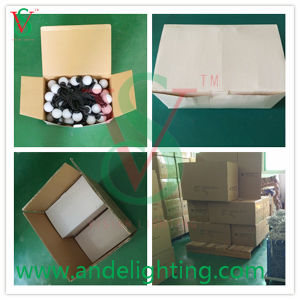 LED String Ball Light Holiday for Outdoor Decoration pictures & photos