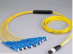 MPO-Sc Fanout 12core Mini Round 3.0mm Fiber Optical Patchcord pictures & photos