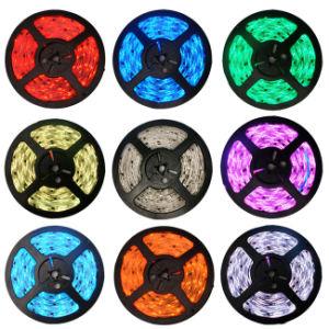 12V LED Strips Light 60LED SMD2835 Single Color pictures & photos
