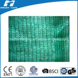 PE Material Tape/Tape or Mono/Tape Shade Net (HT-SN-3) pictures & photos