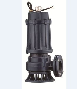 Submersible Pump for Dirty Water (CE Approved) (JWQk series) pictures & photos