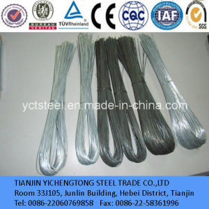 Binding Steel Wire Galavanized and Black Steel Wire pictures & photos