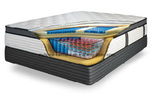 Latex Foam Mattress Eco Friendly Roll up Double Mattress pictures & photos