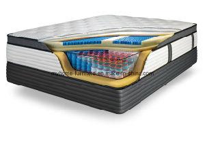 Latex Foam Mattress Eco Friendly Roll up Double Mattress