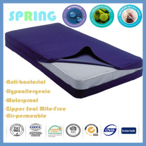 Bed Bug Dust Mite Allergy Relief Blockade Mattress Cover Allergens Breathable pictures & photos