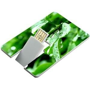 Promotion Super Thin Credit Card USB Flash Drive