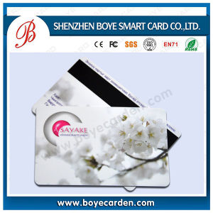 Plastic Printed Loco/Hico Magnetic Stripe Cards pictures & photos