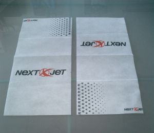 Promotional Airline Nonwoven Pillow Cover pictures & photos