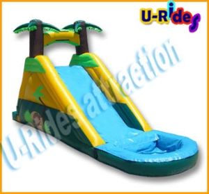 4.5m Long Inflatable Slide for Children and Adult pictures & photos