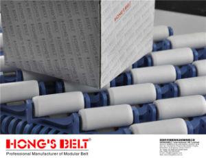 Sorting Modular Conveyor Belt with EU Certificate (HS-3800-4C)
