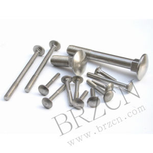 avec 8 Years Experience Breeze Carriage Bolt