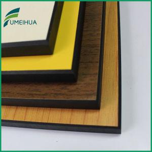 panneau de mur en stratifi compact de r sine ph nolique. Black Bedroom Furniture Sets. Home Design Ideas