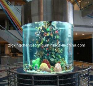 Modern rond groot acrylaquarium modern rond groot for Aquarium rond