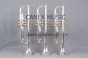 Trompette principale TR-800S de qualité supérieur de Bb
