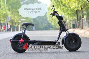 motorino elettrico Es8004 di Citycoco della grande rotella di 1000W 1500W