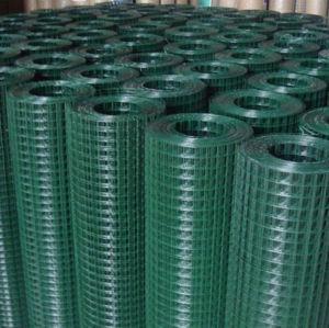 PVC beschichtetes /Galvanized schweißte Maschendraht (HP-002)