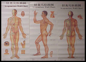 Le Tableau New Acupuncture mur (V-1)