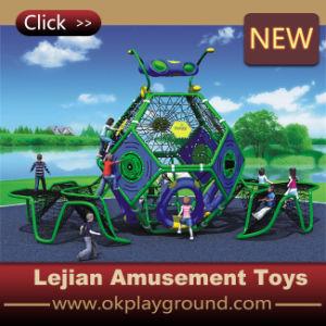 2014 bois Pirate Outdoor Playground Equipment (P1201-10)