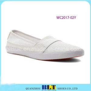Sapatas causais das mulheres da sapatilha por atacado