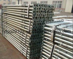U-Head 또는 Plain Head Galvanized Steel Prop