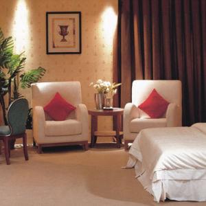 Chaise en bois et de tissu de loisirs de chaise d'hôtel de chambre à coucher (EMT-A0689A)