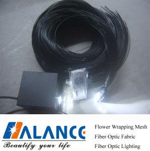 Zij Optische Plastic Optische Vezel met LEIDENE Lichtbron (frp-003)