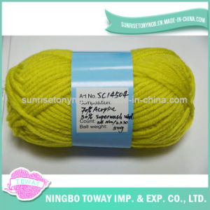 Fio de lãs girado tricotando manualmente Washable extravagante Worsted da caxemira