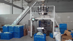 Plastic o Metal Parte Weighing e Packing automatici System