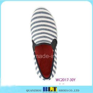 Sapatas de lona do projeto da forma com a zebra impressa