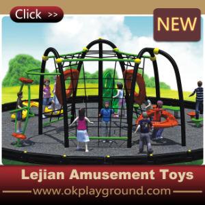 Campo de jogos ao ar livre do edifício de corpo do entretenimento dos miúdos (MP1406-9)