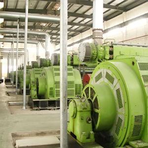 Электростанция 5mw Hfo (2X2.5MW) Hfo/тепловозное Genset