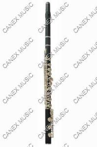 Instruments en bois de /Flute/Wind de la cannelure (FL568KE-S)