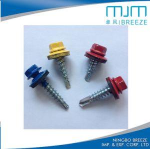 Vis Drilling dentelée d'individu de tête Hex