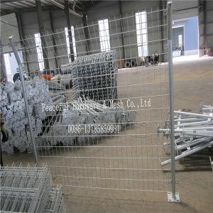Fachmann geschweißte Maschendraht-Zaun-Fabrik