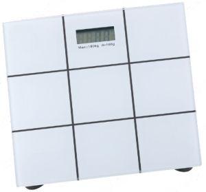 Price poco costoso per Digital Body Scale