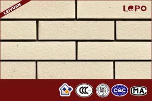 제조 테라코타 점토 벽 벽돌 – 제조 테라코타 점토 벽 벽돌에 ...
