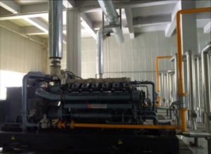 совмещенный 300kw комплект генератора газа Холодн-Жар-Силы