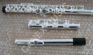 Professionnel cannelure 17 trou) (de FL-175S/cannelure 17 Holes/Flute