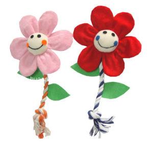 Hundeplüsch-Seil-Blumen-Spielzeug, Haustier-Spielzeug