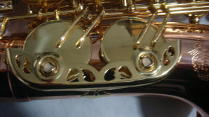 Saxofone / C Saxofone de melodia (SAC-G)