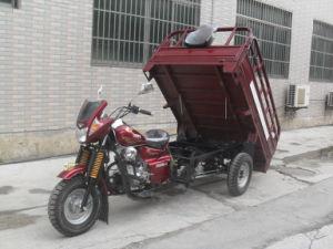 250cc 150cc adulte moteur de moto tricycle 3 roues de moto vendre 250cc 150cc adulte moteur. Black Bedroom Furniture Sets. Home Design Ideas