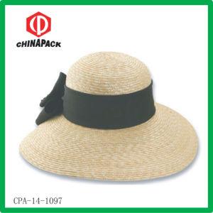 Cappello largo della spiaggia del bordo (CPA-14-1097)