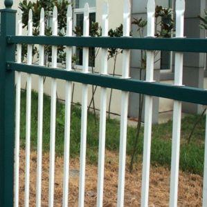 Heißer Verkaufs-Pfosten-Zaun (HPZS-1029)