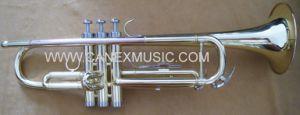 Instruments en laiton de trompette d'entrée de gamme de trompette (TR-235AL)