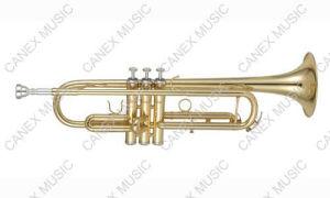 Trompette principale de Bb (TR-235L)/trompette niveau d'entrée