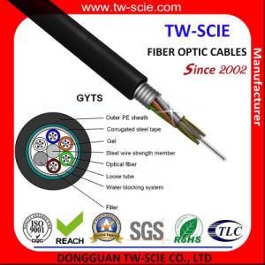 48 Noyau multi Tube blindée conduit câble à fibre optique (GYTS)