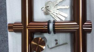 Fechamento de porta de vidro feito do aço inoxidável